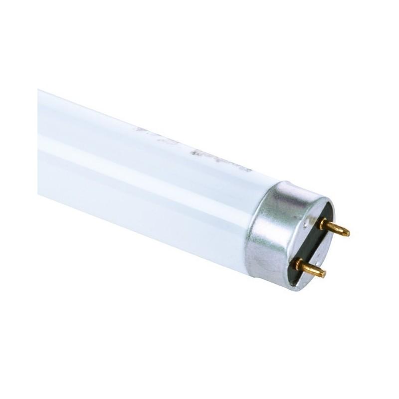 Lampada al Neon Fluorescente T8 Trimax 36W   Luce Bianchissima ART.52107