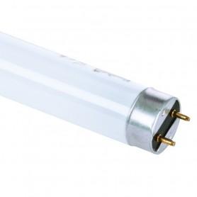 Lampada al Neon Fluorescente T8 Trimax 58W   Luce Bianchissima ART.52111